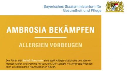 Ausschnitt Plakat Aktionsprogramm Ambrosia Bekämpfung des Bayerischen Staatsministeriums für Gesundheit und Pflege, © Bayerisches Staatsministerium für Gesundheit und Pflege
