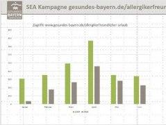 Die Seitenzugriffe wurden durch die SEA-Maßnahmen ganz erheblich gesteigert